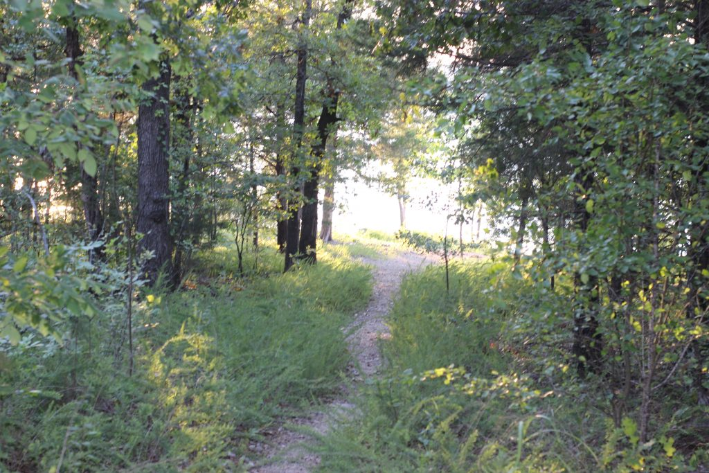 hiking trails in the branson area